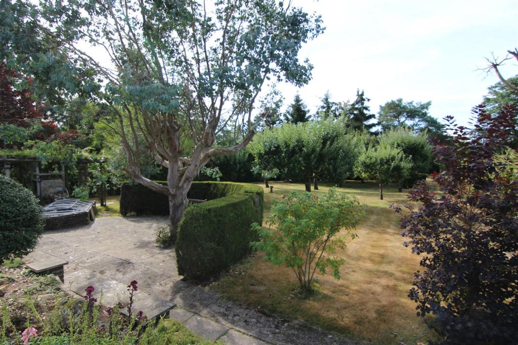 Rear of Garden with