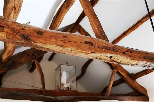 Feature beams
