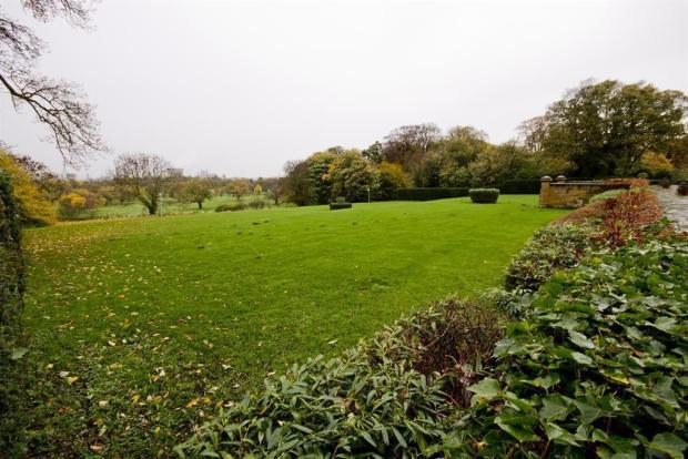 Grounds to the Front
