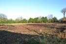 Brynsiencyn Land