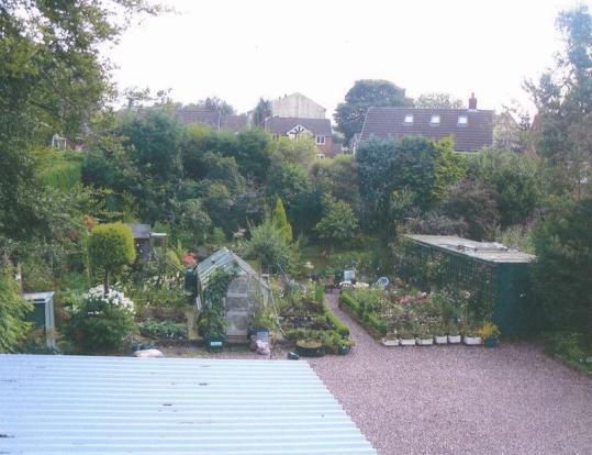 Garden From Ba...