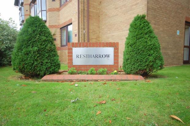 Restharrow