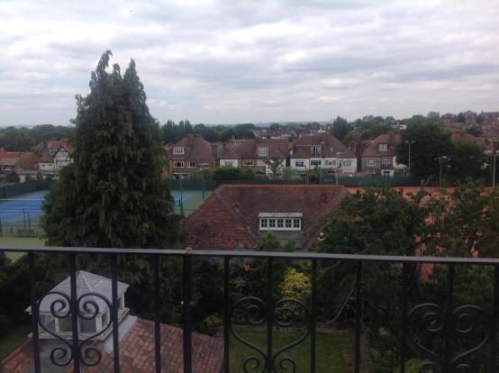 View (Vendor).jpg