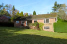 Detached Bungalow to rent in Bunch Lane, Haslemere