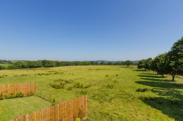 Open Rural Views