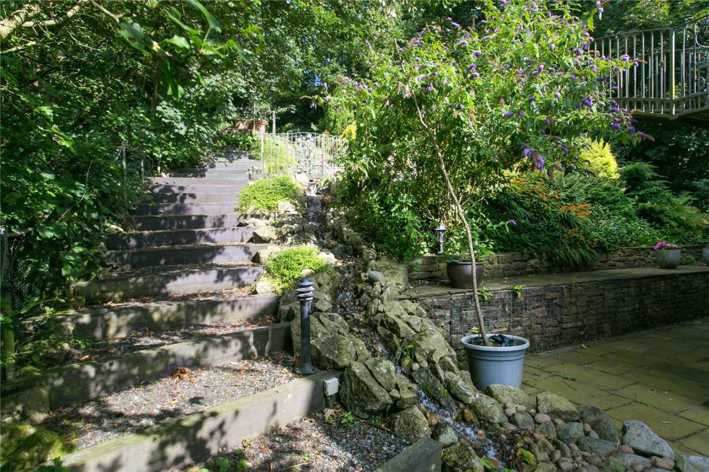 Garden Image 4
