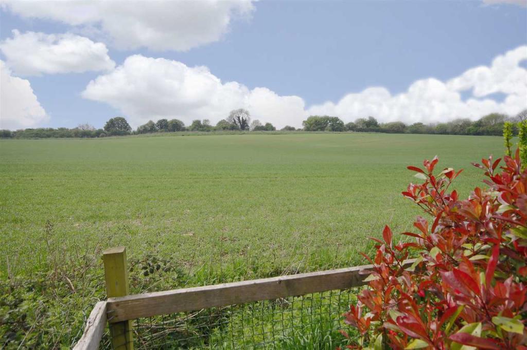 Open fields beyond