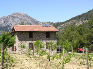new development in Mugla, Fethiye, Üzümlü