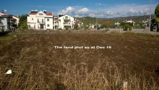 The land plot