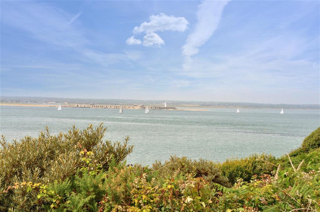 Solent Views
