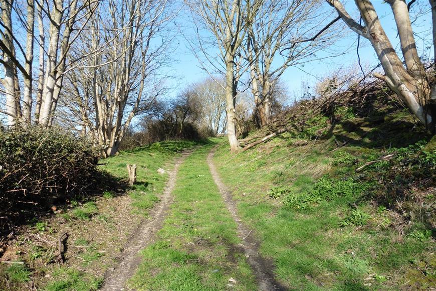 Lane Access