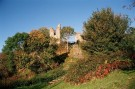 Ruins for sale in Wigmore Castle...