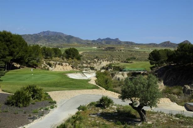 golf course camposol