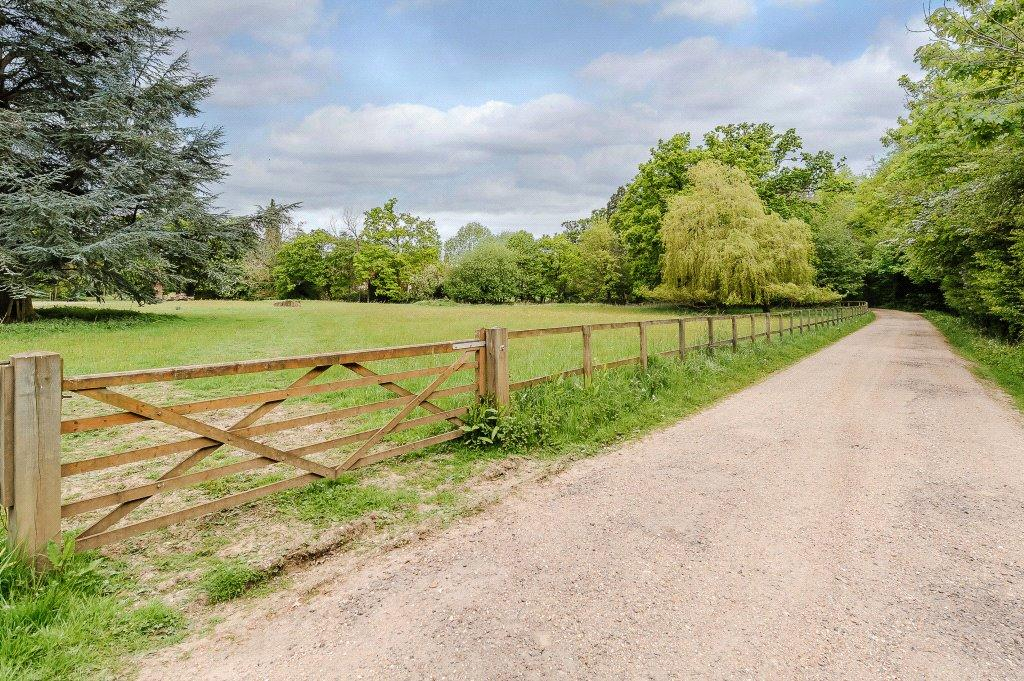 Drive & Meadow