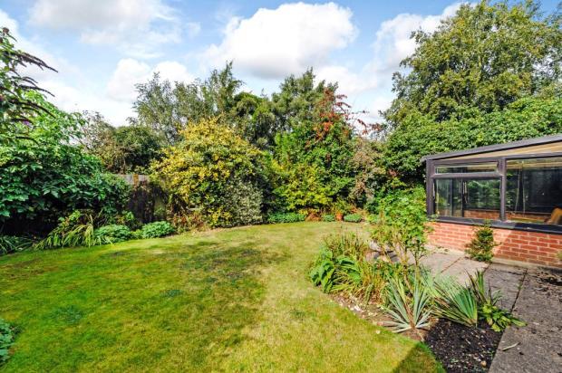 West Facing Garden