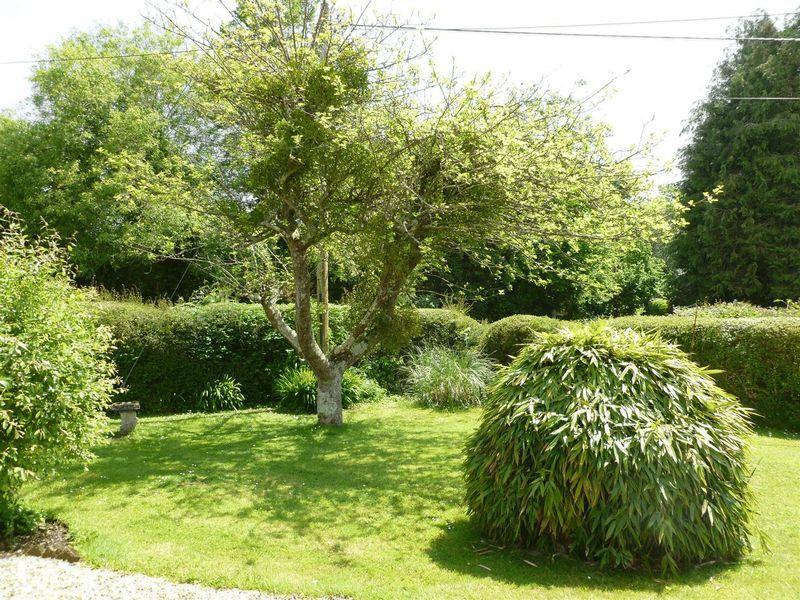 Garden/4