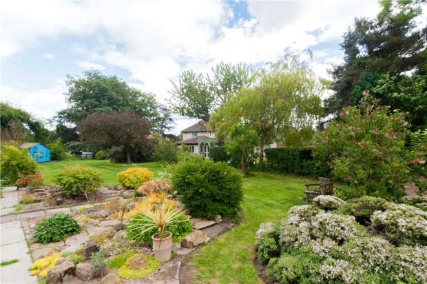 Extensive Garden