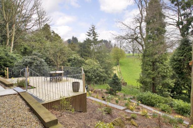Garden & View
