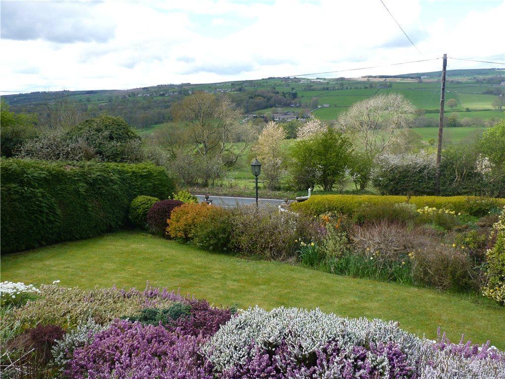 Garden/ View