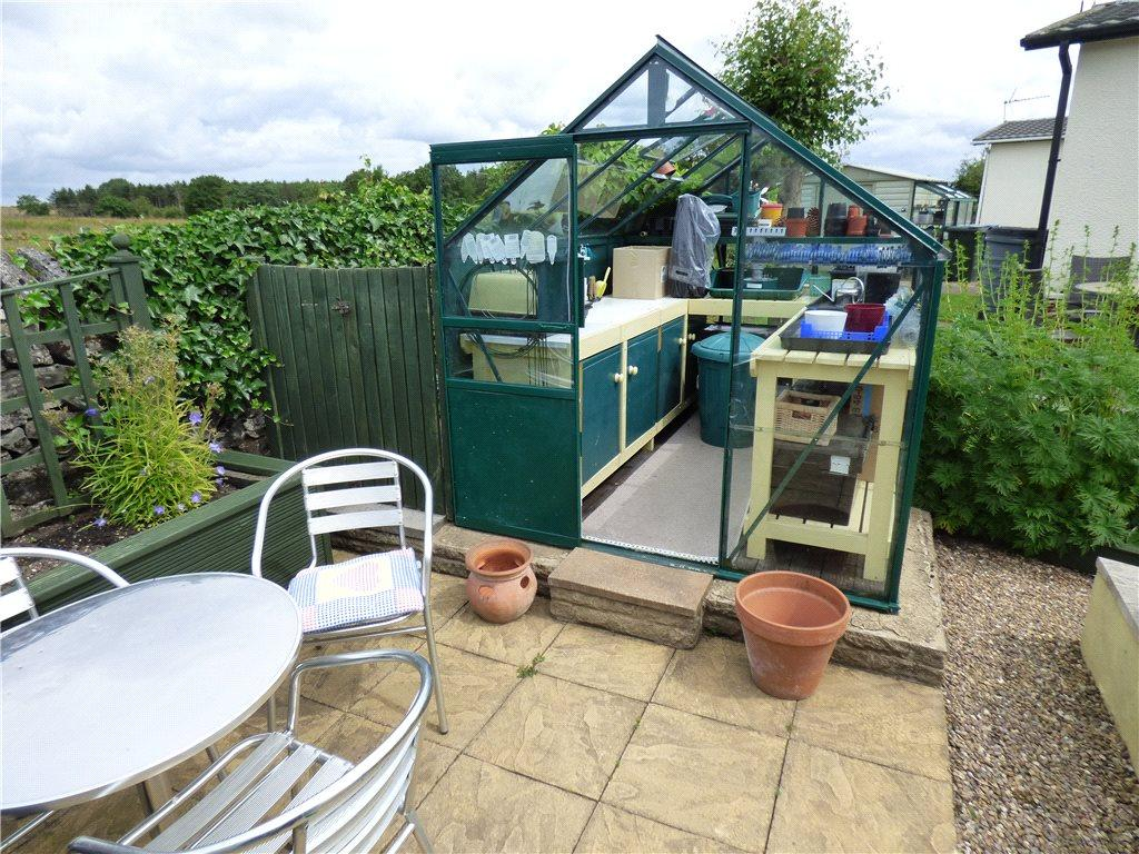 Patio and Greenhouse