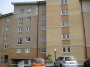 Bothwell Road Flat to rent
