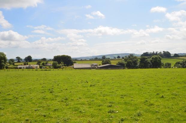 View to Farmhouse