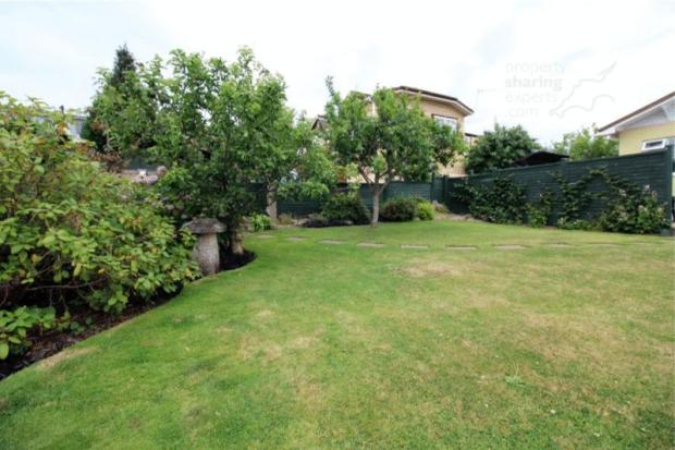 ..... lush lawn