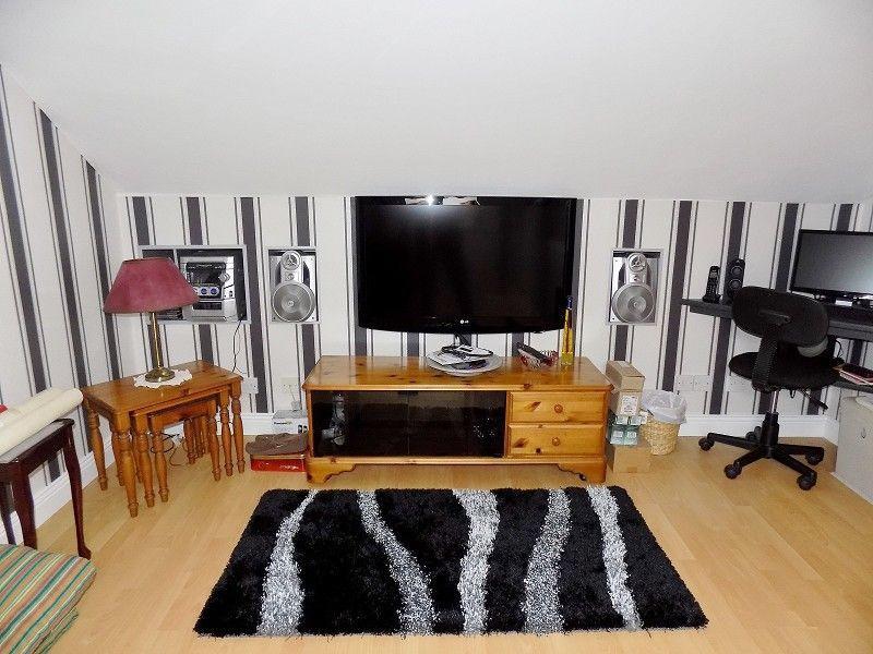 Attic/Occasional Room