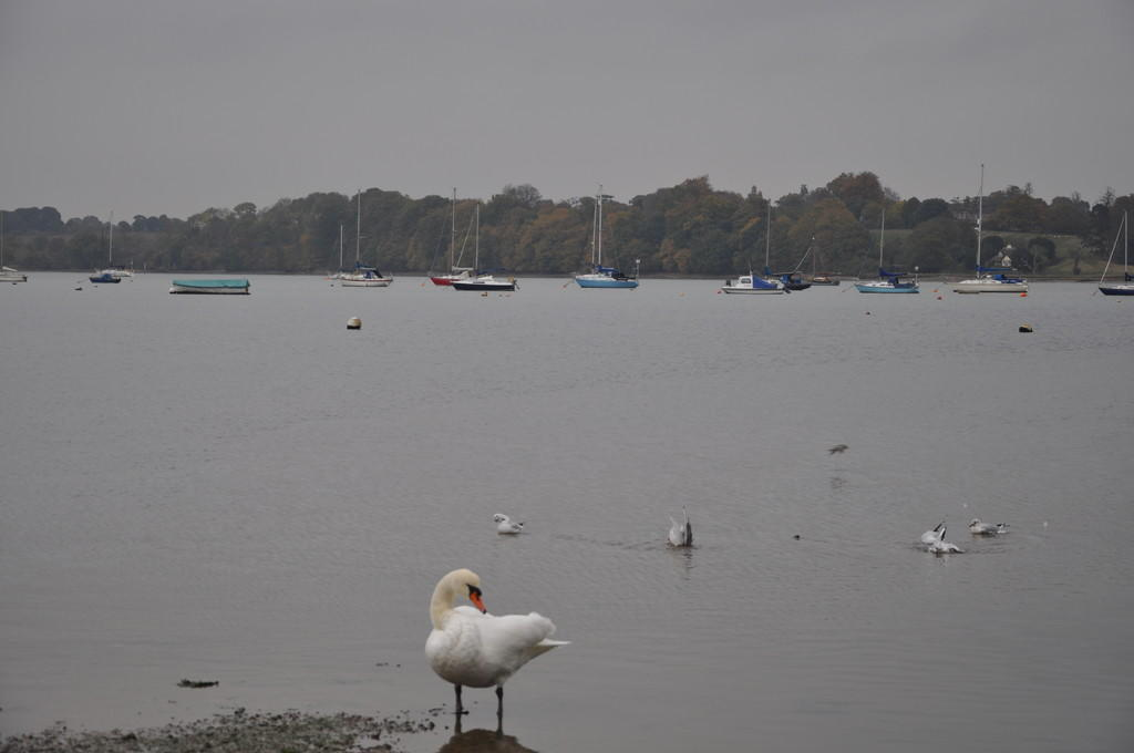 Nearby Pin Mill