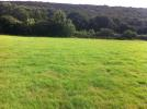 Land in 4.93 Acres of pasture...