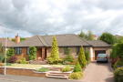 4 bed Detached Bungalow for sale in