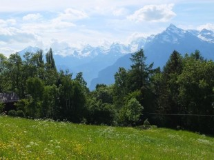 Plot for sale in Valais, Sion