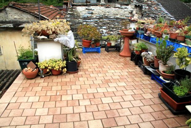 Roof Top Terrace 1