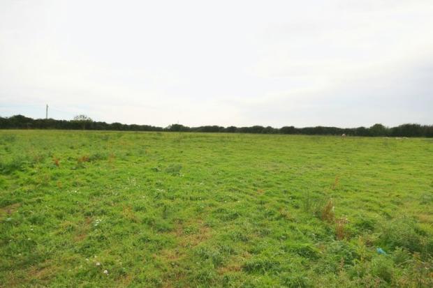 Field To Rear ...
