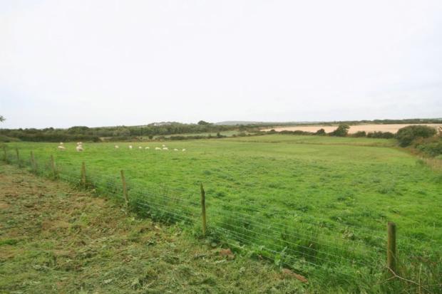 Front Field