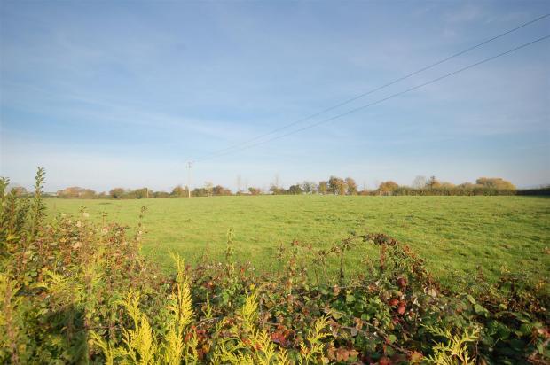 View of open fields