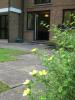 Dingles Court