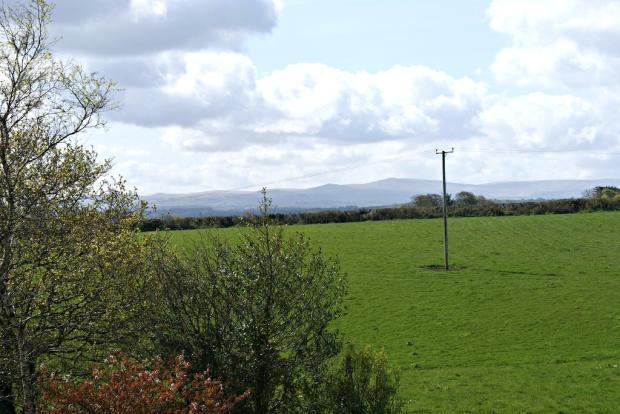 Dartmoor View