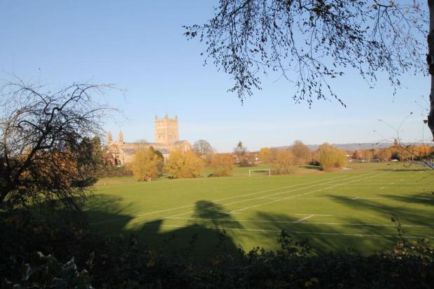 view from garden.jpg