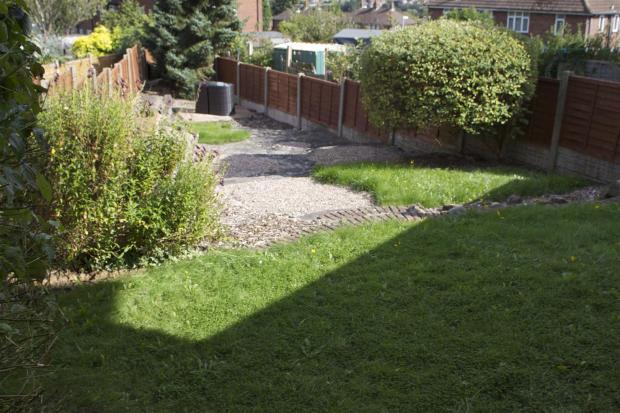 b garden1.jpg