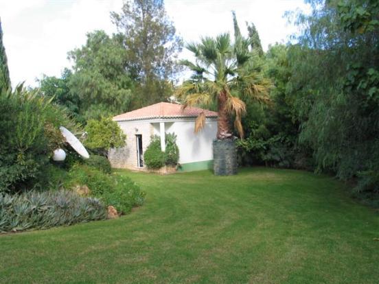 Garden towards Annex