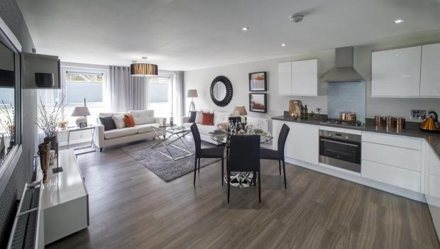 Show Apartment kitchen/living area