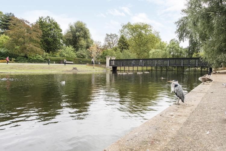 Regents Park Lake 2