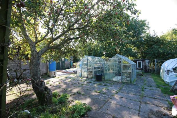 Greenhouses / ...