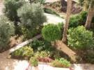 Gardens at rear