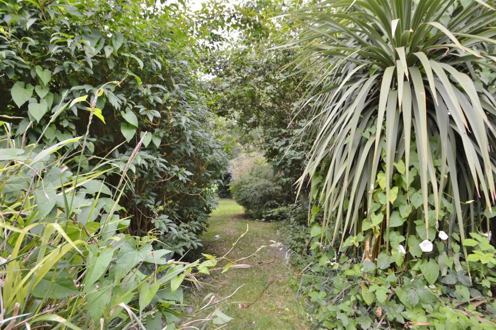 ## Rear Garden.JPG