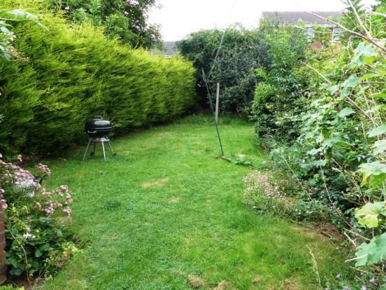 7. Garden