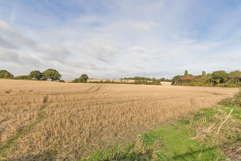 Den-Field-View.jpg