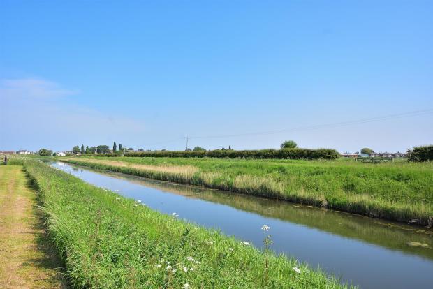 River Bank View