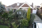 3 bed Detached Bungalow in Brereton Road, Handforth...